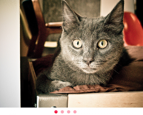 30 Awesome jQuery Slider and Gallery Plugins and Tutorials