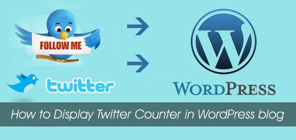 50.twitter-counter