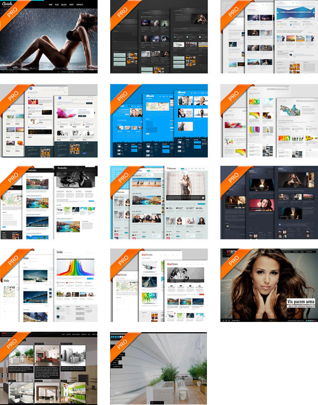 14 Business and Portfolio WordPress Themes   only $17!