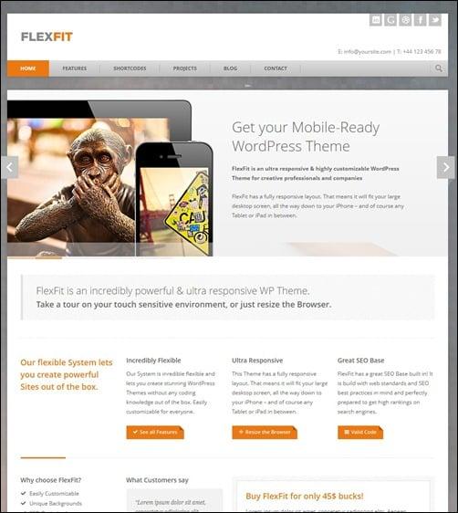 FlexFit – Responsive Business WordPress Theme