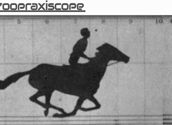JZooPraxiscope