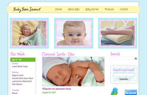 Baby Born Journal: Free PSD Website Template