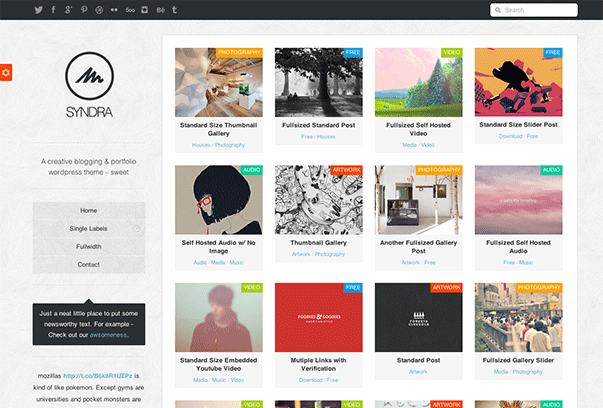 Syndra-WordPress-Theme