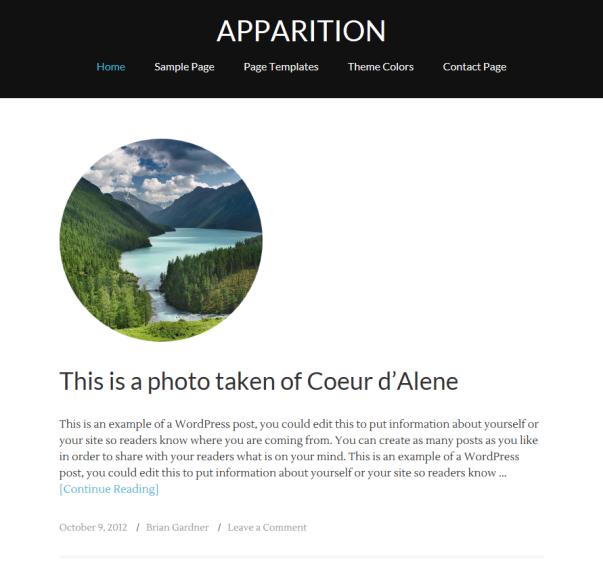 Apparition Clean & Minimalistic Typographic WordPress Themes