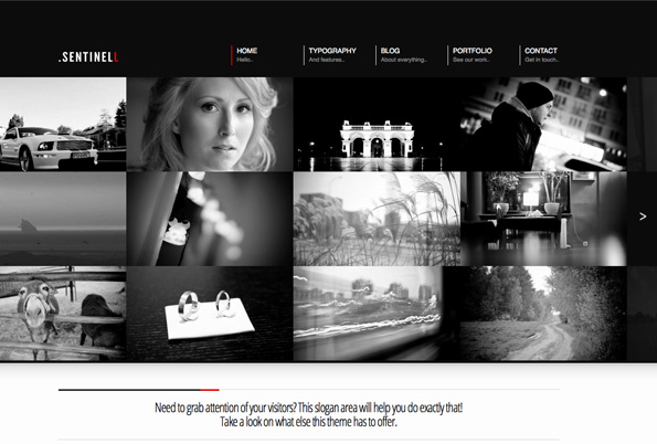 Sentinell - Responsive WordPress Theme