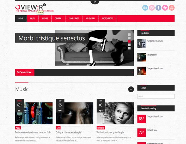 View:r, visitor/author review magazine niche theme