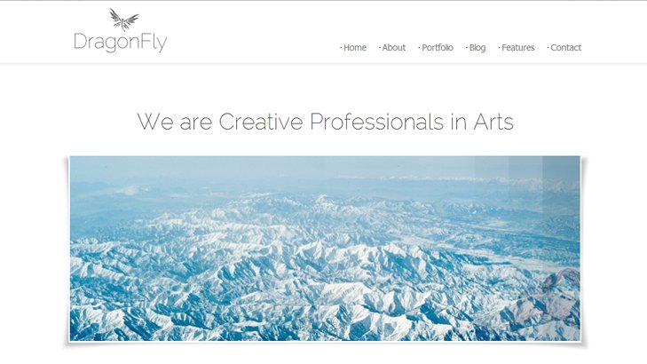 DragonFly-One-Page-Blog-Portfolio-WordPress-Theme-webdesign