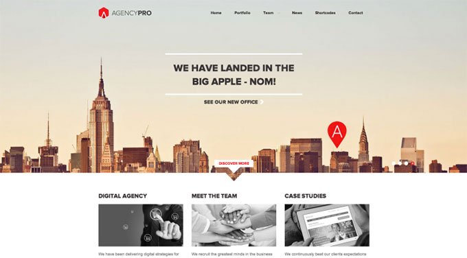 Agency Pro flat WordPress theme