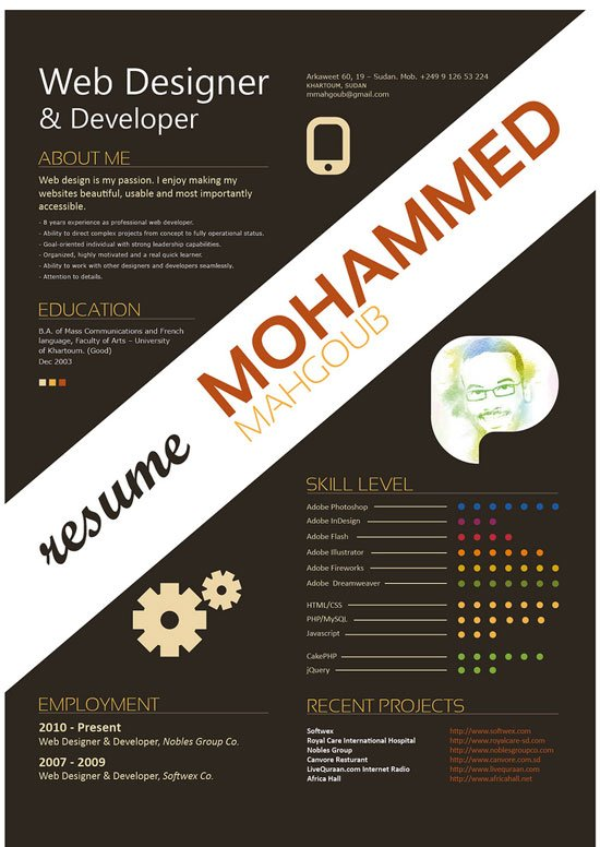 30 Examples of Creative Graphic Design Resumes Infographics – Web Developer Resumes