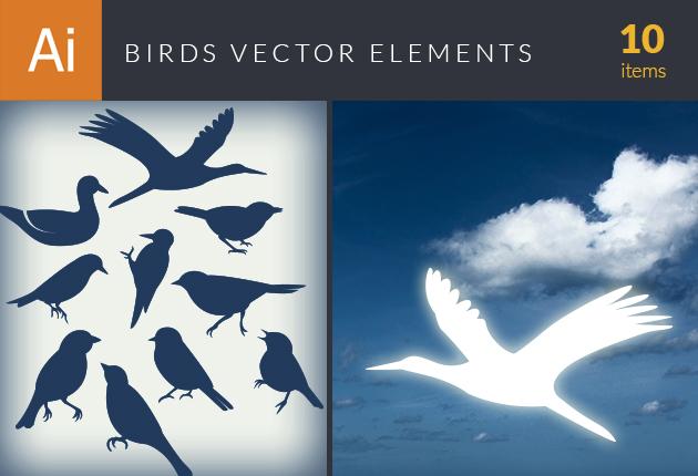 design-tnt-vector-birds-small