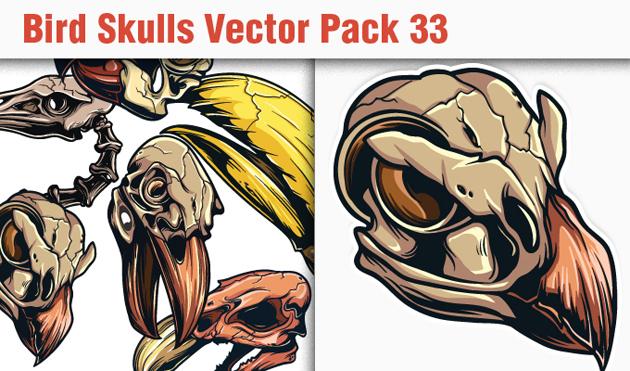 designious-vector-bird-skulls-33-small