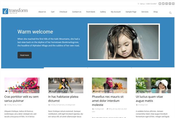 i-transform Free WordPress Themes