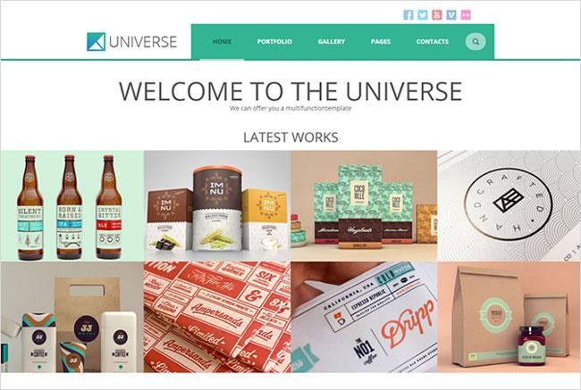 Universe Premium WordPress Tesla Themes