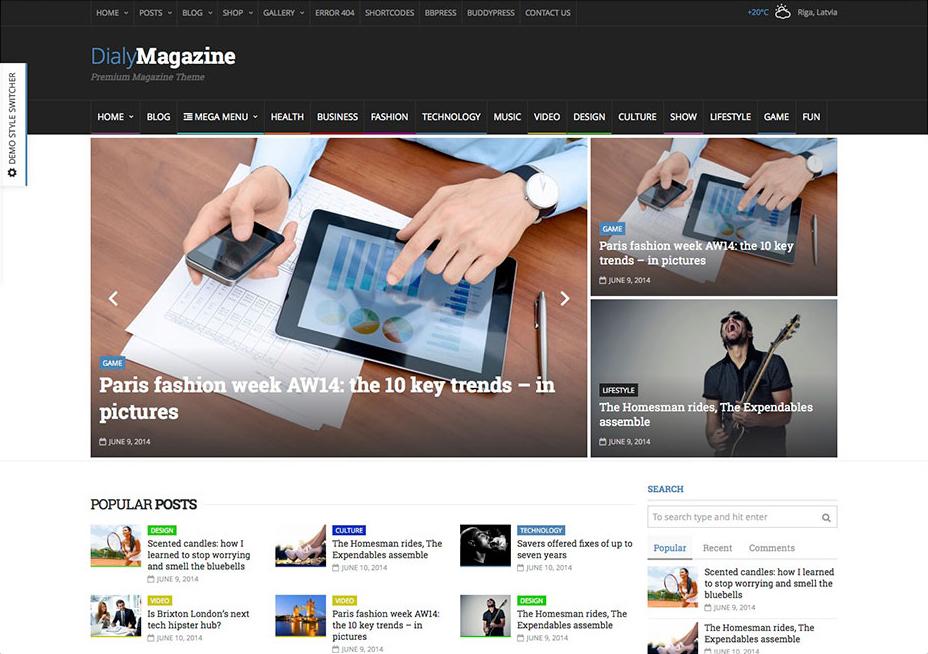 DialyMagazine - WordPress Review Themes