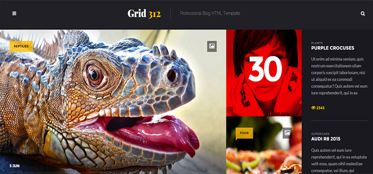 Grid312 – Professional Blog HTML Template
