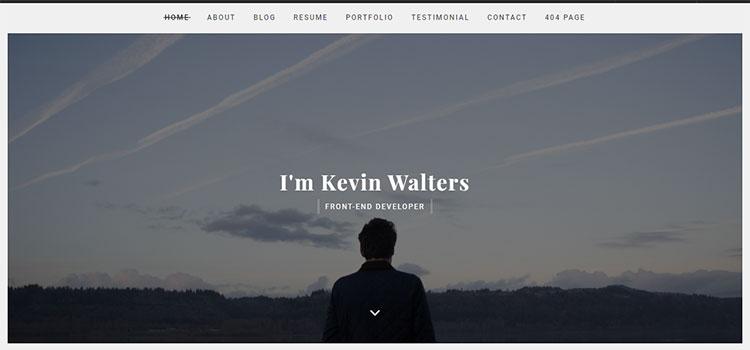 MYDA – Personal Resume and Portfolio Template (Personal HTML Templates)