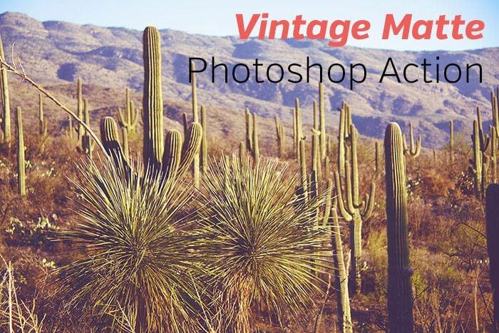 Vintage Matte Free Photoshop Action