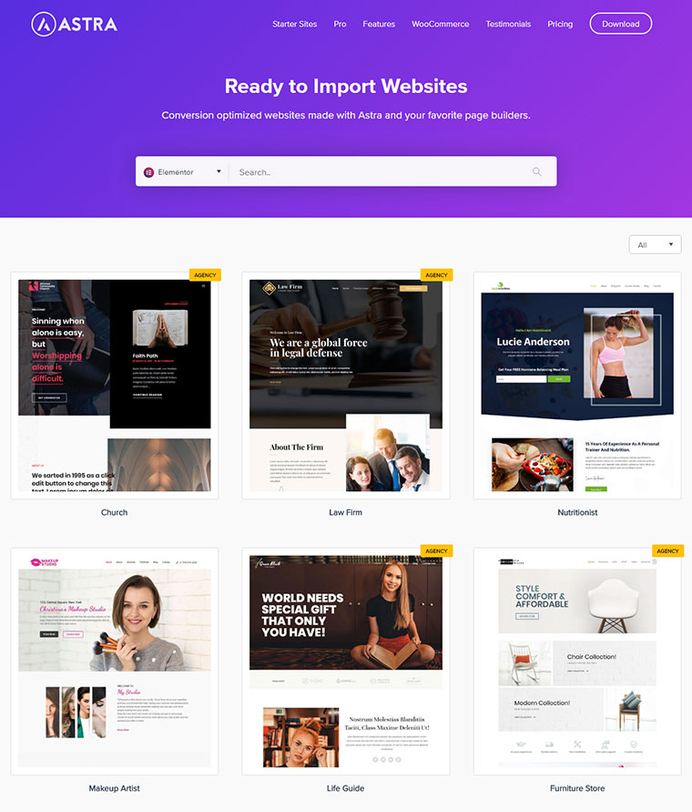 Astra Theme Ready to Import Websites